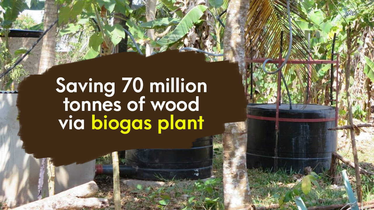 Brilliant Bharat: Saving 70 million tonnes of wood via biogas plant - Approximately 70 million tonnes of wood can be saved from a biogas plant being run by cow dung which will save about 30 million trees from being cut. The production of about 30 million tons of carbon dioxide can also be stopped with it
