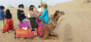 Camels are back in trend during COVID-19 pandemic in Rajasthan. Know how and why…!